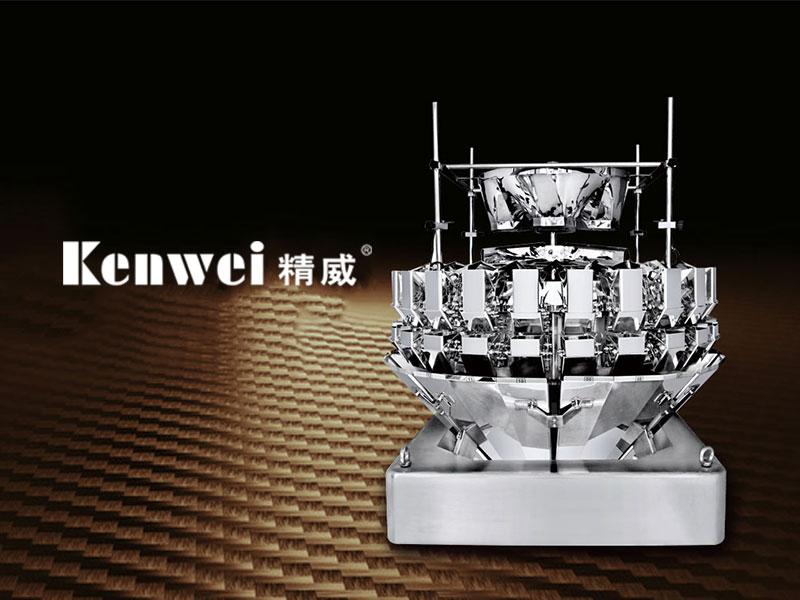 广东精威智能机器有限公司英文网站建设