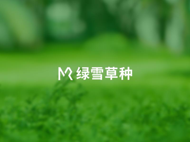 绿雪草种响应式营销型网站